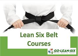 Virtual Belt Classes.png