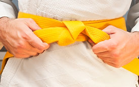 Lean Six Sigma Yellow Belt.jpg