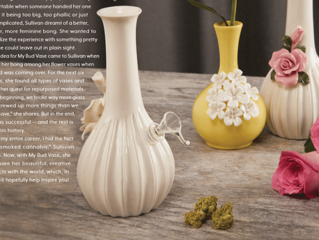 MY BUD VASE: SOPHISTICATED WATER PIPES