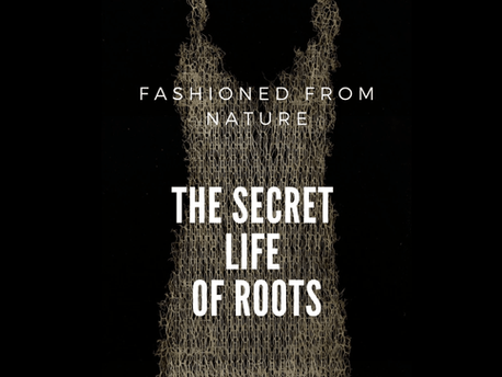 FASHIONED FROM NATURE: THE SECRET LIFE OF ROOTS