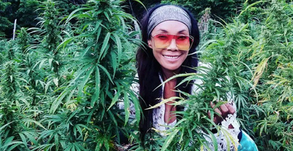 BO MONEY: BRINGING EQUALITY TO THE CANNABIS INDUSTRY