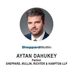 SheppardMullin - Aytan Dahukey.png