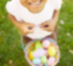 Easter Egg Hunt Little Girl.jpg