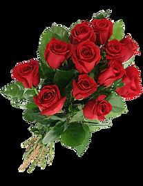 Roses - Monaye Rikard Transformation