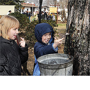 Join us for the 74th annual Pennsylvania Maple Festival!