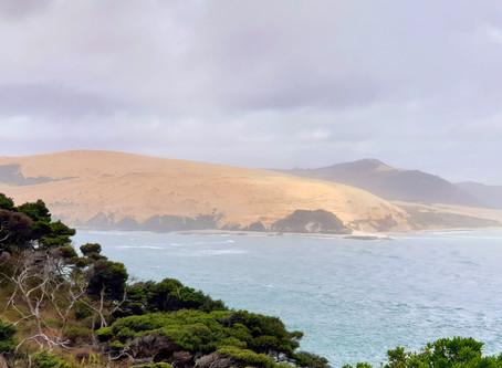 New Zealand. A beautiful coast line.