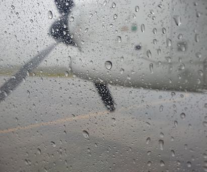 Flights with #AirNewZealand