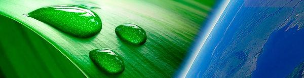 oleo ozonizado ozone oil
