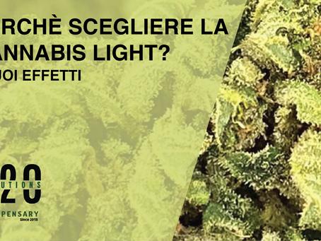 Perché la Marijuana Legale?