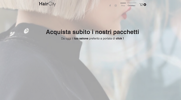 Web Site Hair City