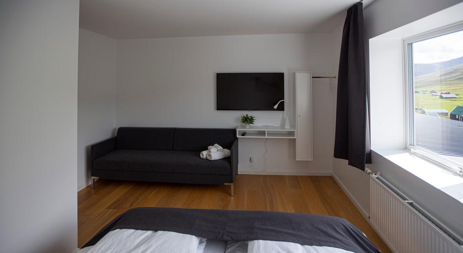 Dobule room wite sleeping sofa (allergy friendly)