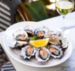home-oysters.jpg