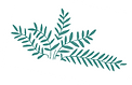 fern-home.png