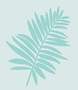fern-about.png