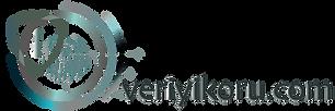VeriyiKoru Logo_Çalışma Yüzeyi 1.png