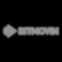 08-partnerlogo-bitmovin.png