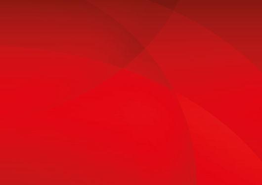 fondo rojo 2.jpg