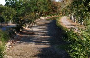 Canal de berry à sec 10.19 C.WEISS.jpg