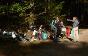 Tronçais_Marche_de_la_forêt_Bourbonnais_