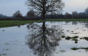 Inondations Bourbonnais 03.18 C.Weiss