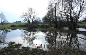 Inondations Bourbonnais 03.18 Weiss