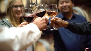 GRUPO ANECOOP Bodegas. La experiencia del vino - Vídeo Loopita AdFilm