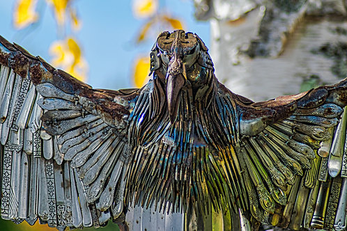 Tarnished Eagle