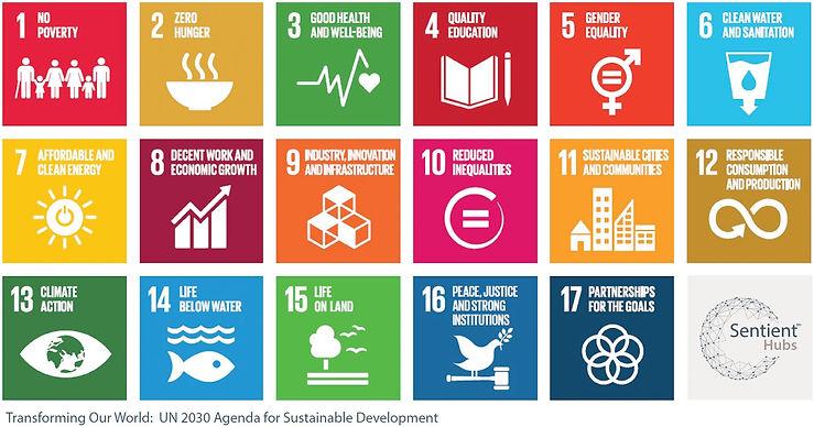 UN 2030.JPG