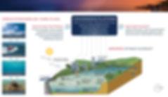 SH ARMS OV A3 WEB.jpg