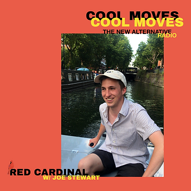 Red Cardinal.png