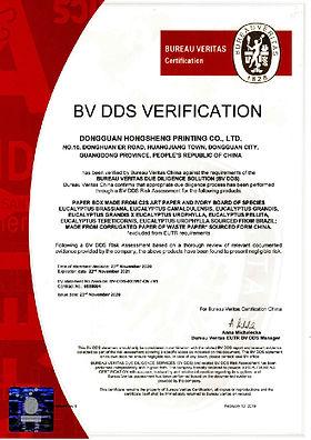 DDS-2020-01.jpg