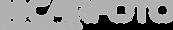 logo CARFOTO cinza v3.png