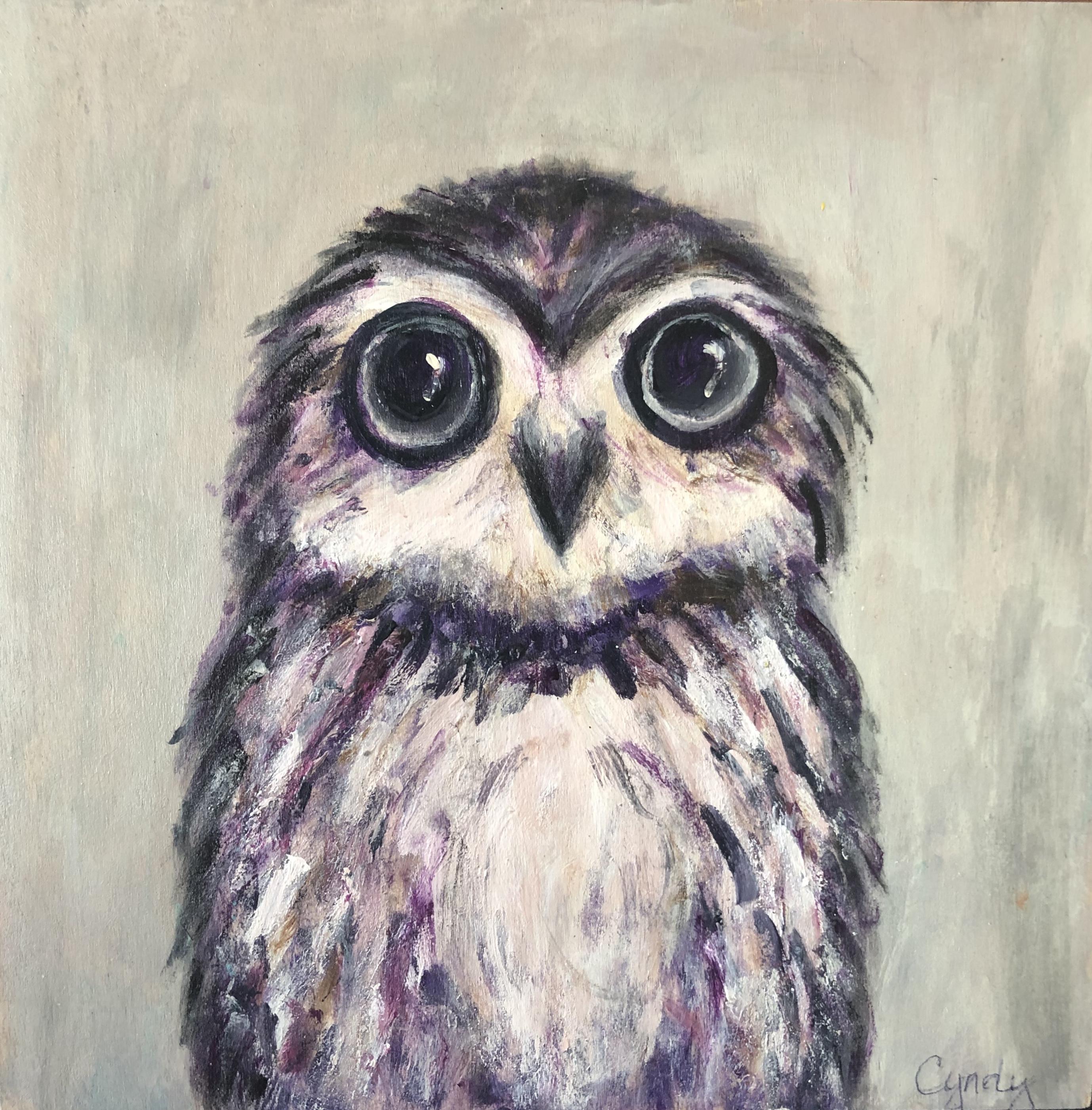 Petit Owl