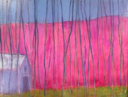 Pink Hill ~ Homage to Wolf Kahn