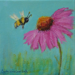 Echinacea and the Bee