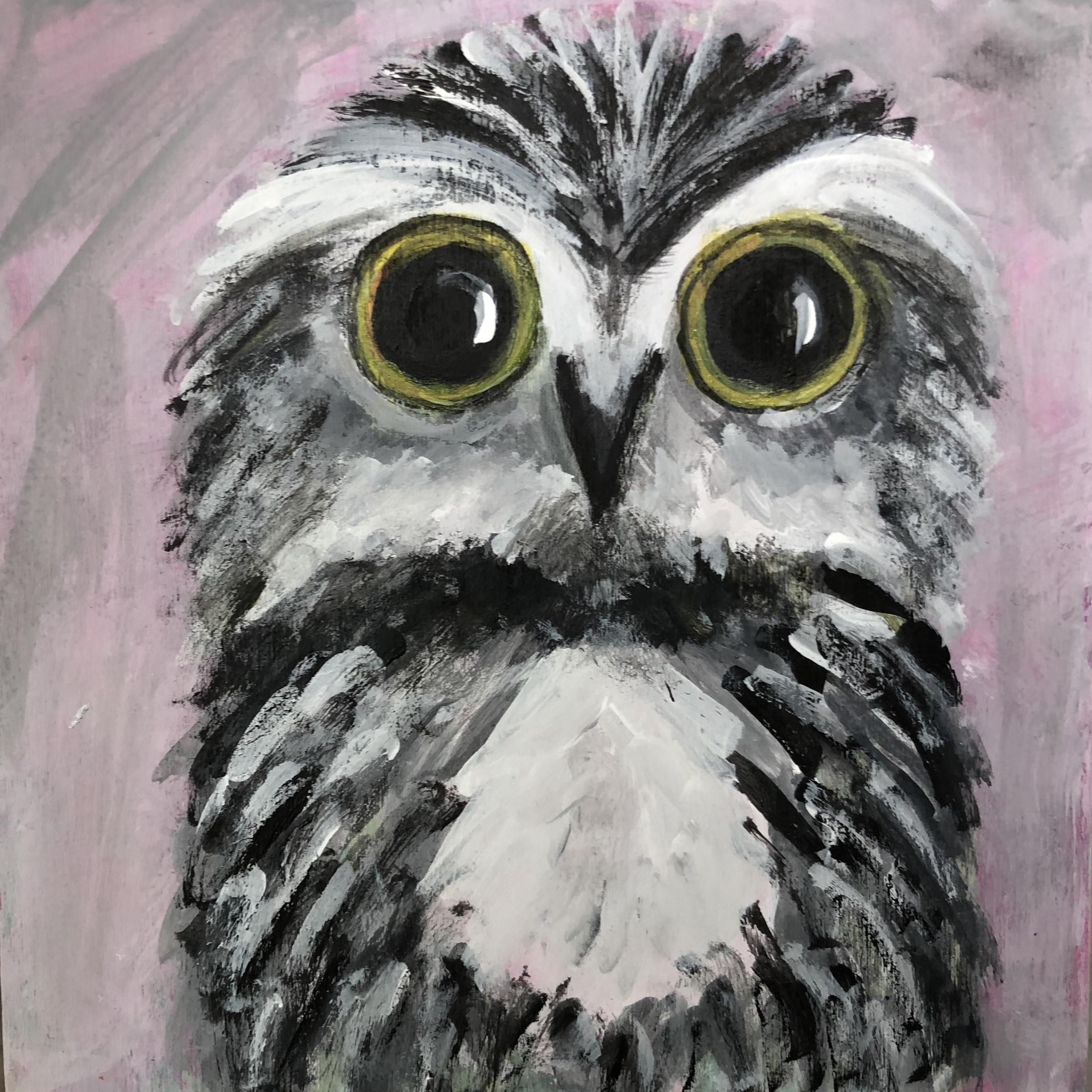 Le Petite Owl