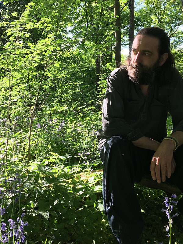 man with beard in a bluebell wood