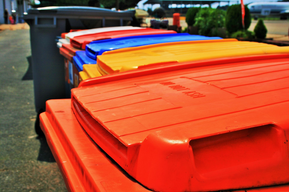 Audit your Waste and recycling bins