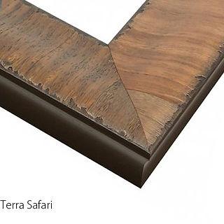 Terra Safari Text.jpg