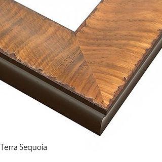 Terra Sequoia Text.jpg