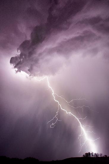 Thunder Heart FF544