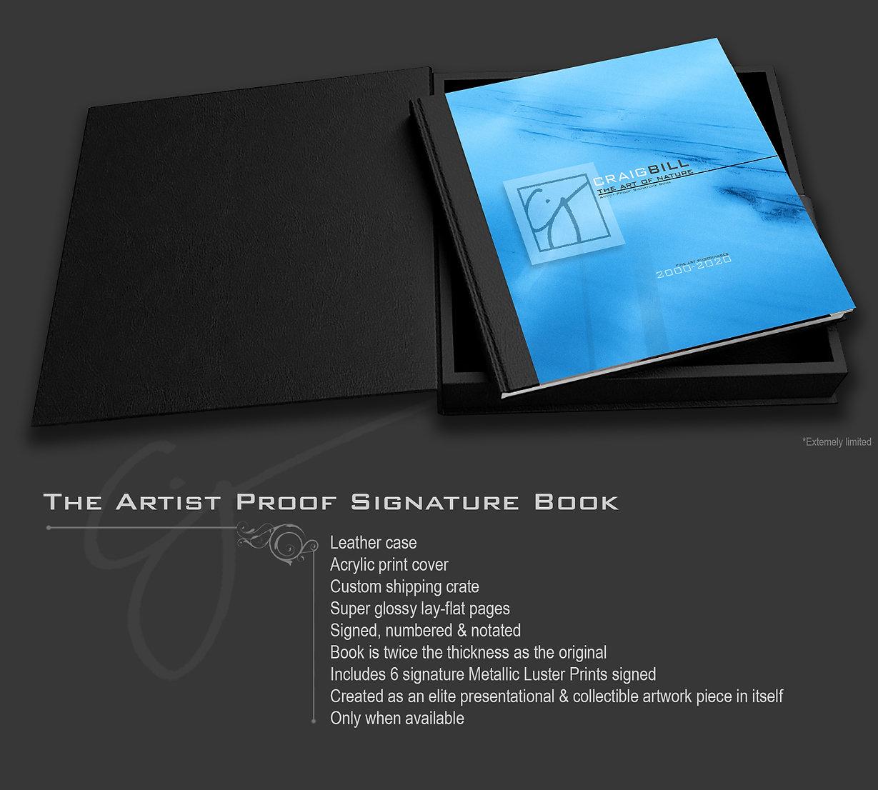 BookPromoAPSB.jpg