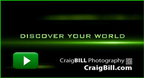 ThumbSplashWeb2019promo.jpg