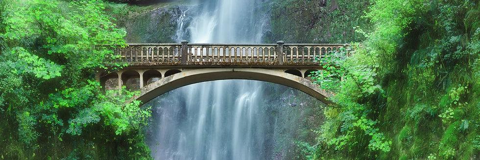 Bridge to Beyond TP1845