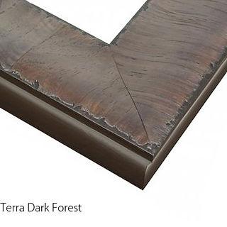 Terra Dark Forest Text.jpg