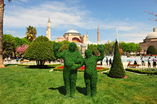 Hedges in Istanbul