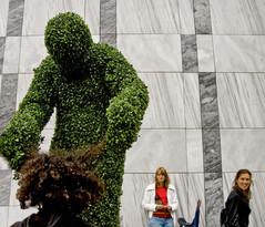 Living Topiary Hair Dressing