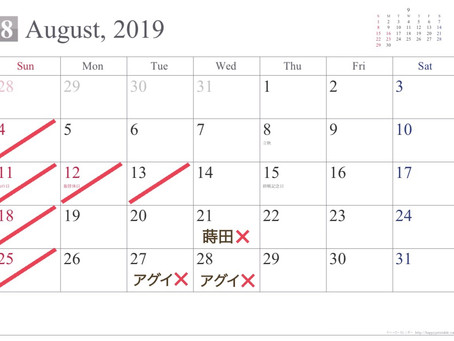 8月のお休み🐬