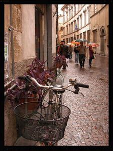 Lucca, Italy 2007