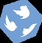 Twitter Würfel
